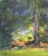 Sunlight Through Trees - SOLD (Prints Available)